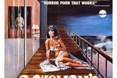 womans_torment_poster_01