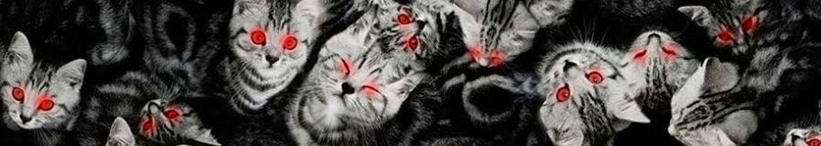 Thin_Banner_Horror_cats_v1