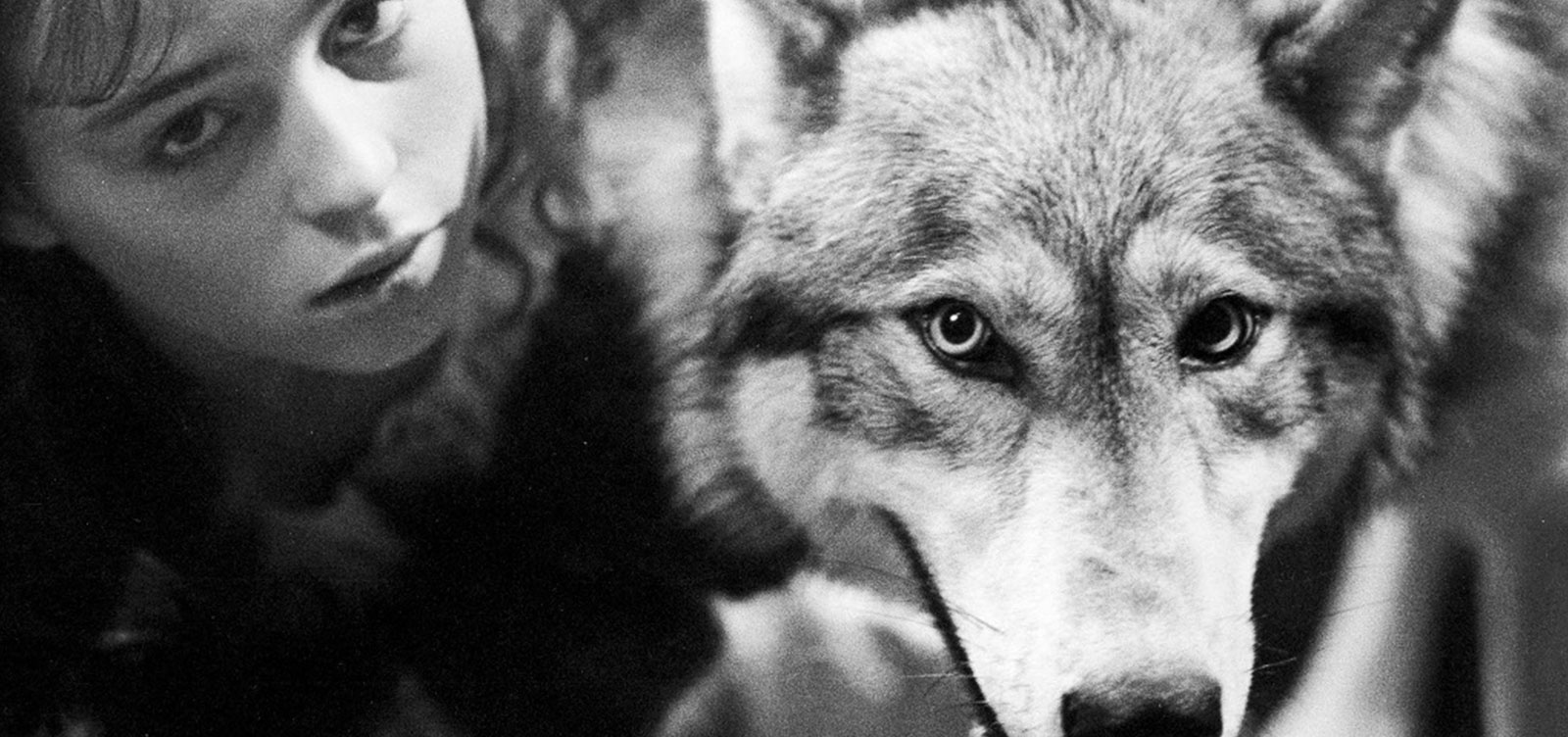 Company_of_Wolves_Review_Images_V01