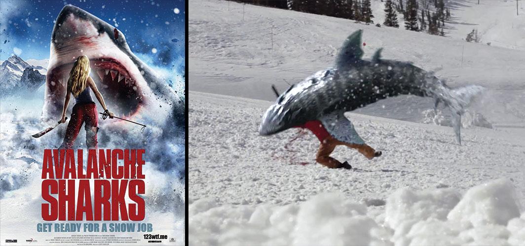 Shark_Films_Images_Avalanch_Shark_V01.jp