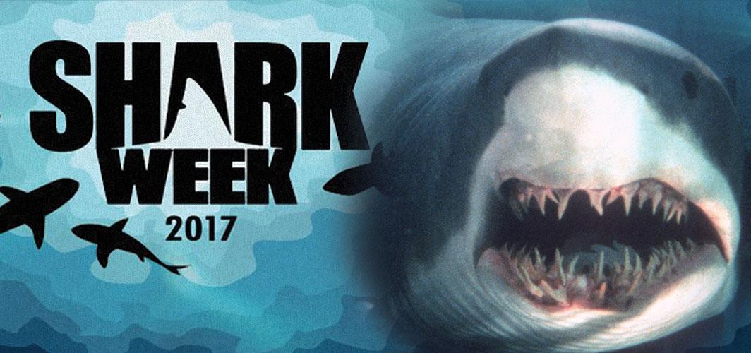 Sharkweek – 'Deep Blue Seas' Behind the Scenes