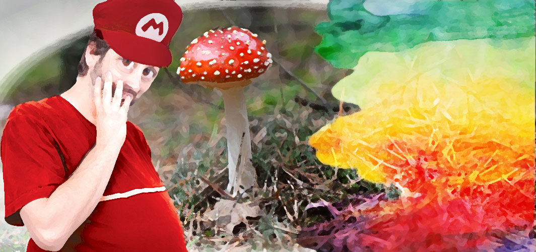 Mushrooms – Super Mario Brothers - The Weird World of Video Game Power Ups!