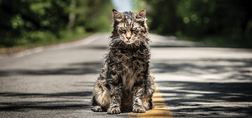 First look at Stephen King's 'Pet Sematary' Remake