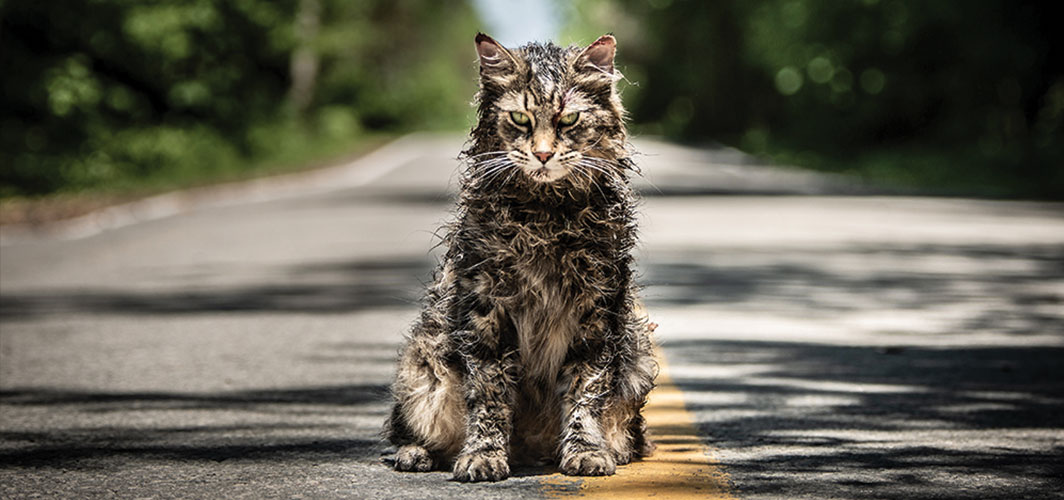 Pet Sematary (2019) - Horror Land - Review