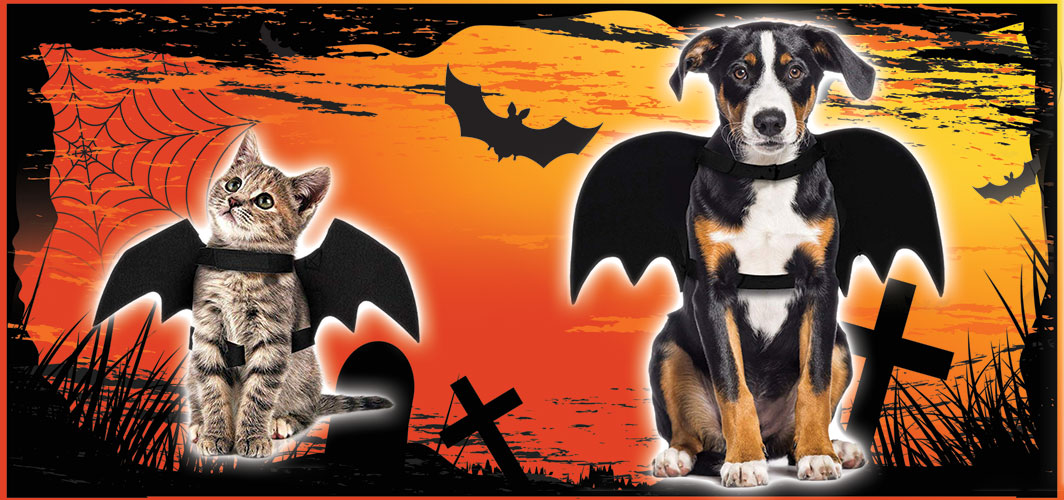 Bat Dog/Cat Costume - Halloween Costumes for Pets - Terrifying 2019 Collection - Horror Land