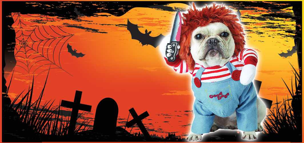 Chucky / Deadly Doll - Halloween Costumes for Pets - Terrifying 2019 Collection - Horror Land