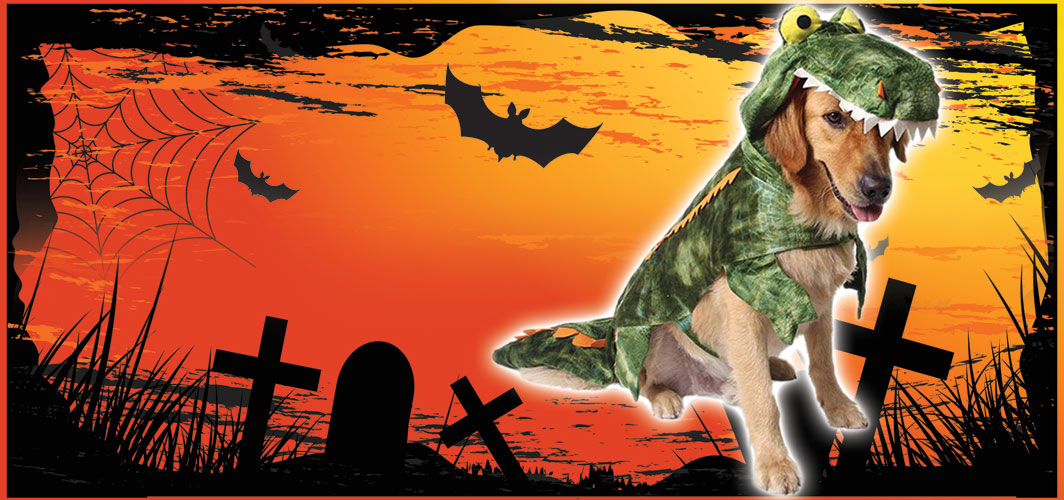 Dinodog - Halloween Costumes for Pets - Terrifying 2019 Collection - Horror Land