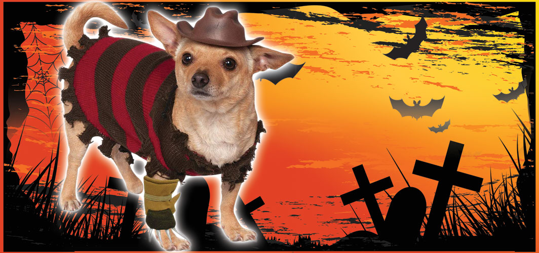 Freddy Krueger - Halloween Costumes for Pets - Terrifying 2019 Collection - Horror Land