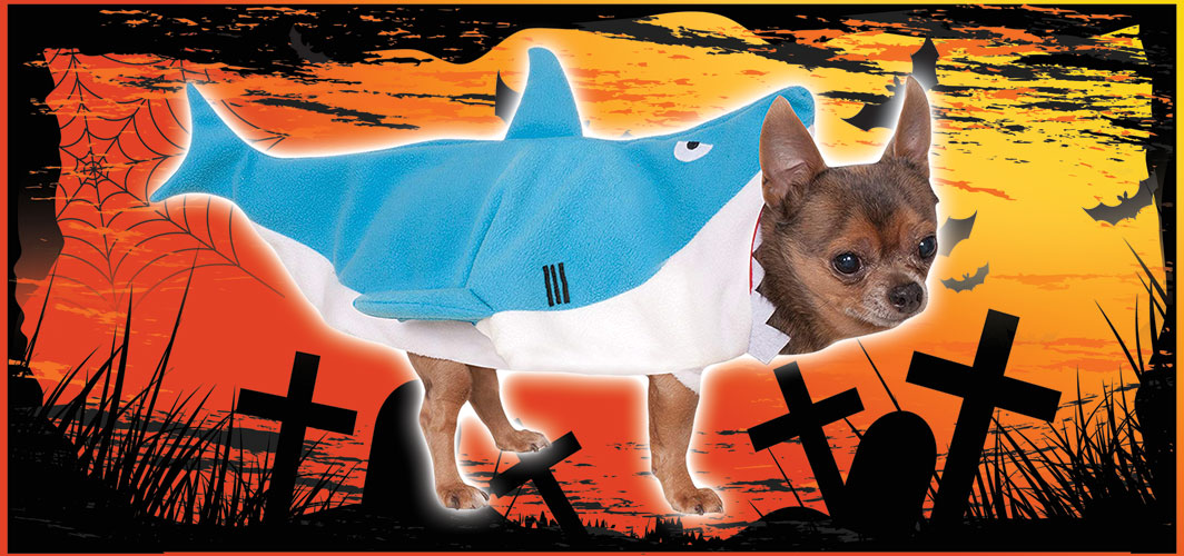 Shark Attack Dog Costume - Halloween Costumes for Pets - Terrifying 2019 Collection - Horror Land