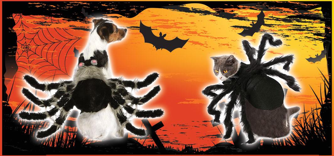 Spider Dog /Cat - Halloween Costumes for Pets - Terrifying 2019 Collection - Horror Land