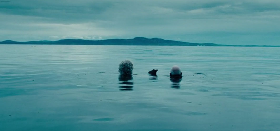 The Boy (2016) - 10 Horrific Drownings In Horror Films