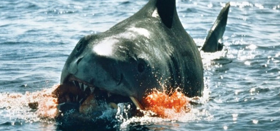 Horror Movies That Ignored Their Previous Films - Jaws: The Revenge (1987)  – Horror Land